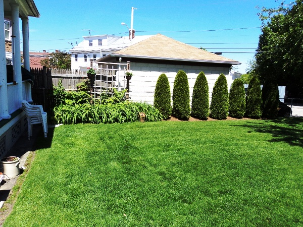 Turf Master Inc Landscape Maintenance and Lawn Care RI